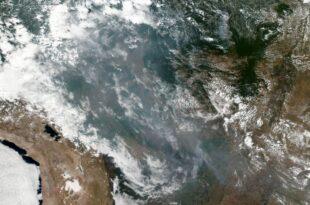 Waldbrände im Amazonas Gebiet Brasiliens Regierung unter Druck 310x205 - Waldbrände im Amazonas setzen Brasiliens Regierung unter Druck