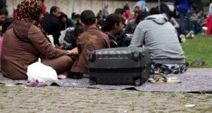 Zahl der Personen mit Migrationshintergrund gestiegen 310x165 - Zahl der Personen mit Migrationshintergrund gestiegen