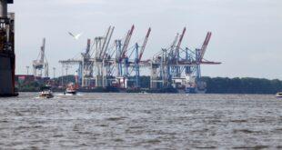 Zoll in Hamburg beschlagnahmt viereinhalb Tonnen Kokain 310x165 - Zoll in Hamburg beschlagnahmt viereinhalb Tonnen Kokain