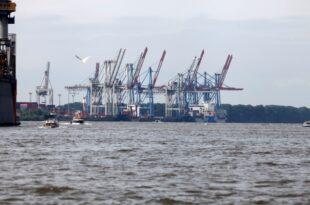 Zoll in Hamburg beschlagnahmt viereinhalb Tonnen Kokain 310x205 - Zoll in Hamburg beschlagnahmt viereinhalb Tonnen Kokain