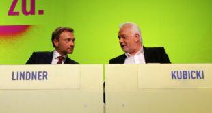Emnid FDP und AfD legen zu 310x165 - Emnid: FDP und AfD legen zu