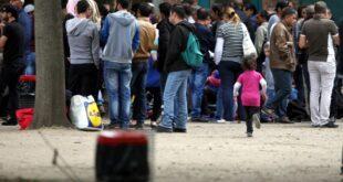 Erfolgsquote der Asylklagen von Flüchtlingen gesunken 310x165 - Erfolgsquote der Asylklagen von Flüchtlingen gesunken