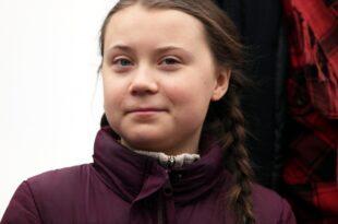 "Klimaaktivistin Thunberg erhält Alternativen Nobelpreis 310x205 - Klimaaktivistin Thunberg erhält ""Alternativen Nobelpreis"""