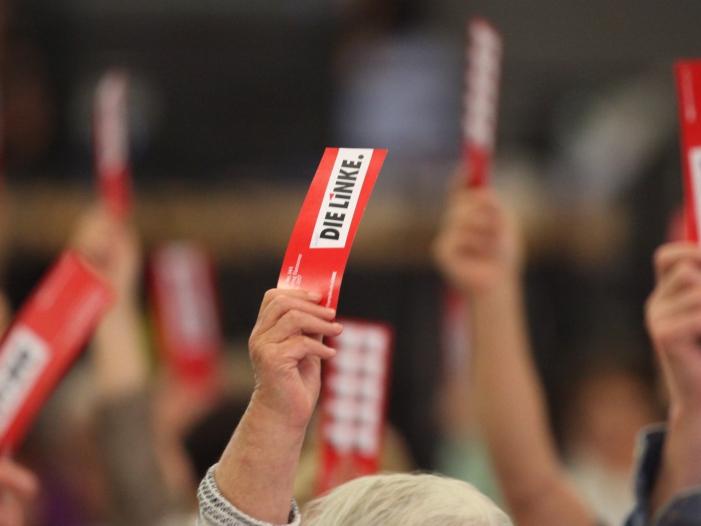 Bild von Linksfraktionschefin ruft ihre Partei zum Umsteuern auf