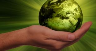 Nachhaltigkeit 310x165 - Erneuerbare Energien sind alternativlos