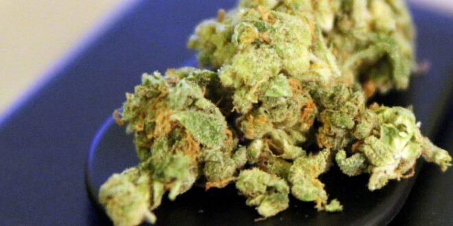 SPD Gesundheitspolitiker wollen Cannabis Konsum entkriminalisieren 660x330 - SPD-Gesundheitspolitiker wollen Cannabis-Konsum entkriminalisieren