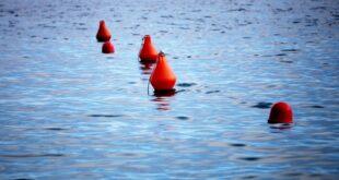 Seehofer verteidigt Vorstoß zur Seenotrettung 310x165 - Seehofer verteidigt Vorstoß zur Seenotrettung