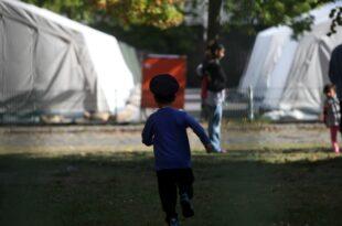Weniger Asylanträge von minderjährigen Flüchtlingen 310x205 - Weniger Asylanträge von minderjährigen Flüchtlingen