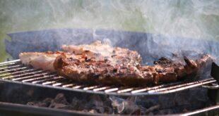 Deutsche Händler importieren 40.000 Tonnen Rindfleisch aus Brasilien 310x165 - Deutsche Händler importieren 40.000 Tonnen Rindfleisch aus Brasilien