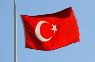 FDP Außenpolitiker kritisiert türkische Offensive in Nordsyrien 310x205 - FDP-Außenpolitiker kritisiert türkische Offensive in Nordsyrien