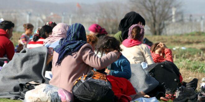 FDP Politiker Djir Sarai fürchtet neue Flüchtlingswelle nach Europa 660x330 - FDP-Politiker Djir-Sarai fürchtet neue Flüchtlingswelle nach Europa