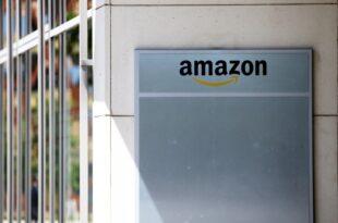 IW Institut bringt Zerschlagung von Amazon ins Spiel 310x205 - IW-Institut bringt Zerschlagung von Amazon ins Spiel