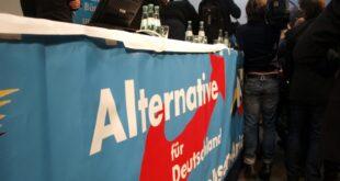 """Verfassungsschutzchef AfD Flügel wird immer extremistischer 310x165 - Verfassungsschutzchef: AfD-""""Flügel"""" wird """"immer extremistischer"""""""