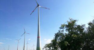 ber Tausend Hektar Wald für Bau von Windkraftanlagen gerodet 310x165 - Über Tausend Hektar Wald für Bau von Windkraftanlagen gerodet