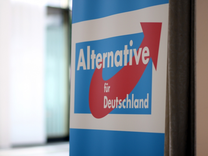 Bild von AfD-Parteitag in Braunschweig gestartet