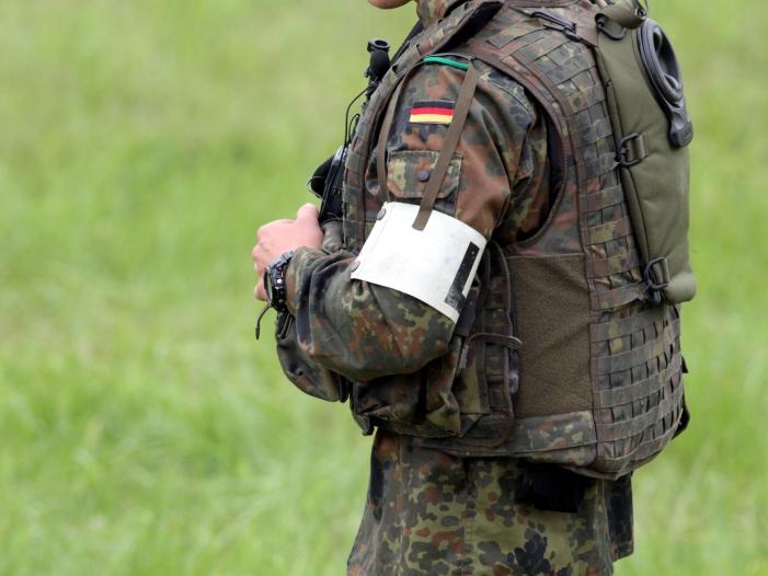 Photo of Borkenkäfer-Plage: Kommunen verzichten auf Hilfe der Bundeswehr