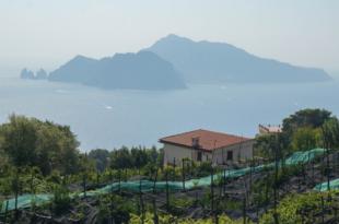 Capri 310x205 - Italien Urlaub - damals und heute