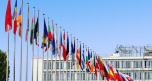 EU Flaggen 310x165 - Die EU und der Welthandel