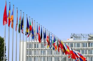 EU Flaggen 310x205 - Die EU und der Welthandel