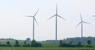 """Grüne werfen Altmaier mutwillige Zerstörung der Windkraft vor 310x165 - Grüne werfen Altmaier """"mutwillige Zerstörung"""" der Windkraft vor"""