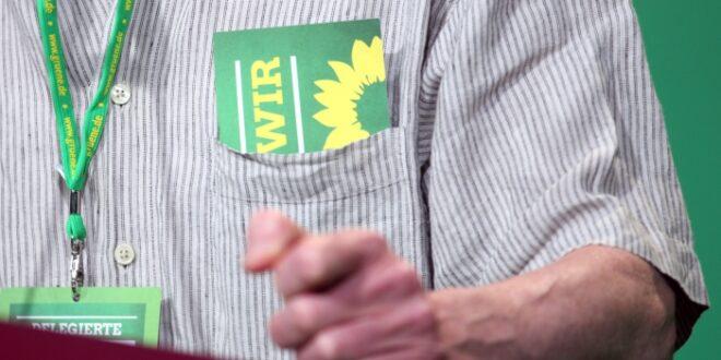 """Grünen Politiker Bayaz Wir wollen keinen Systemwechsel 660x330 - Grünen-Politiker Bayaz: """"Wir wollen keinen Systemwechsel"""""""