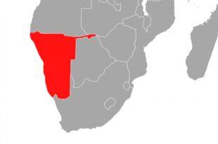 Polenz Einigung im Streit über Völkermord in Namibia in Sicht 310x205 - Polenz: Einigung im Streit über Völkermord in Namibia in Sicht