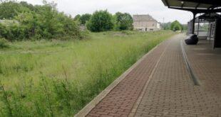 Bahn stoppt Stilllegung von Strecken 310x165 - Bahn stoppt Stilllegung von Strecken