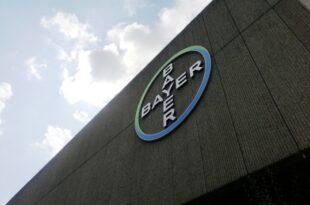Bayer Cheflobbyist fordert Gesetz für Lobby Transparenz 310x205 - Bayer-Cheflobbyist fordert Gesetz für Lobby-Transparenz