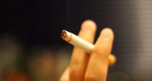 Drogenbeauftragte erwartet Zustimmung der Union zu Tabakwerbeverbot 310x165 - Drogenbeauftragte erwartet Zustimmung der Union zu Tabakwerbeverbot