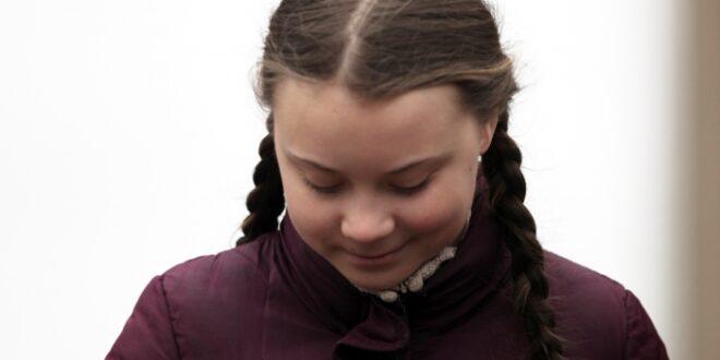 Evonik Chef Kullmann kritisiert Greta Thunberg 660x330 - Evonik-Chef Kullmann kritisiert Greta Thunberg