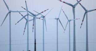 """Grüne legen Rettungsprogramm für Windkraft vor 310x165 - Grüne legen """"Rettungsprogramm"""" für Windkraft vor"""