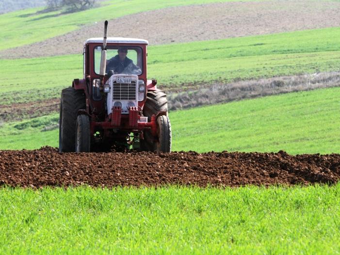 Bild von Habeck fordert Systemwechsel in der Landwirtschaft