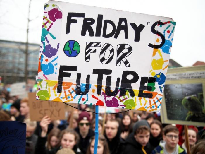 """Bild von Politologe: """"Fridays-for-Future""""-Bewegung bietet keine Lösungen an"""