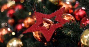 Umfrage Jeder Zehnte kauft seinen Weihnachtsbaum im Internet 310x165 - Umfrage: Jeder Zehnte kauft seinen Weihnachtsbaum im Internet