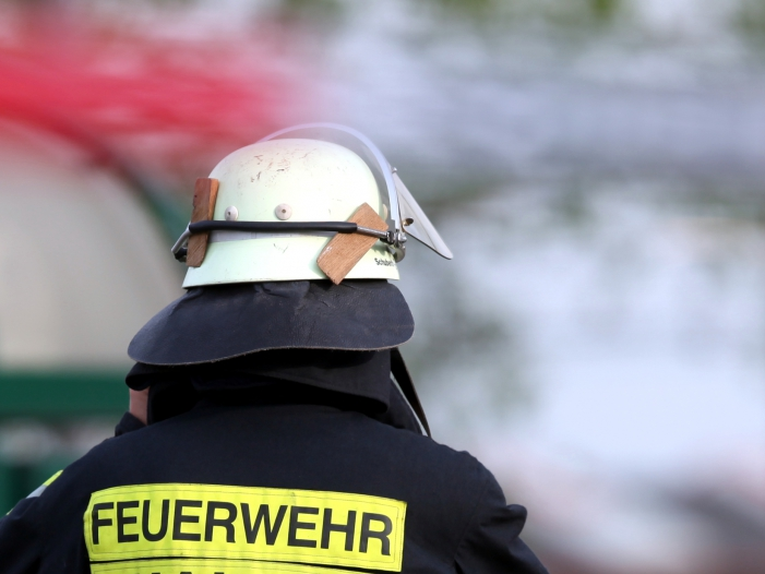 Brand in Krefelder Zoo Mögliche Verursacher melden sich - Brand in Krefelder Zoo: Mögliche Verursacher melden sich