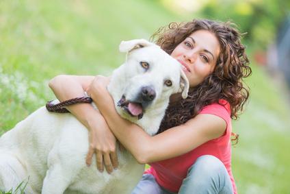 Hundehaftpflicht1 Hundehaftpflicht: Für wenige Euro auf der sicheren Seite
