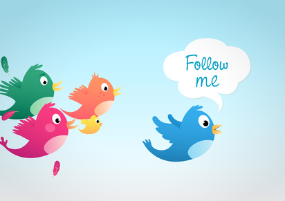 Twitter Follower